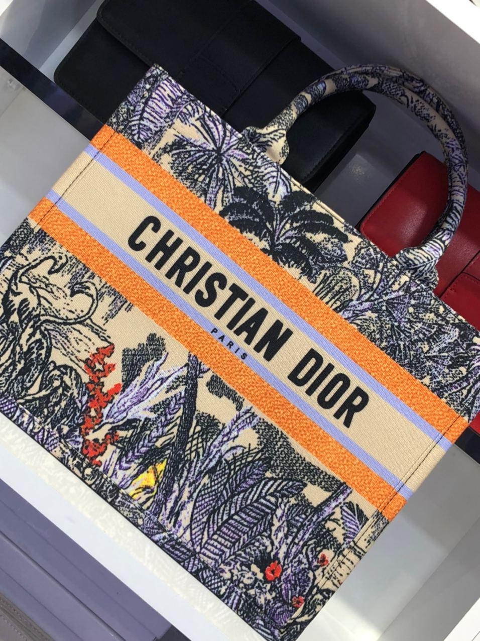 Sac Dior Book Tote