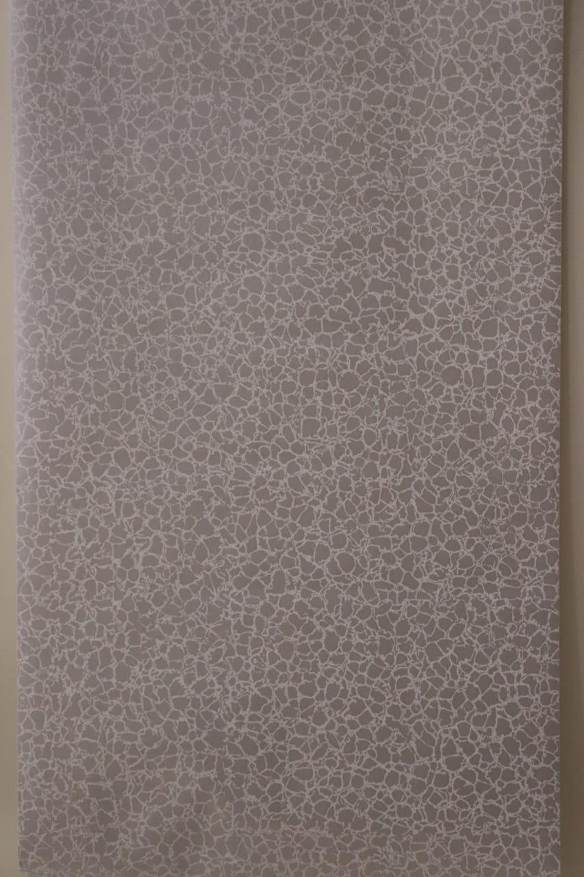 0619421241     papier peint adhésif argenté