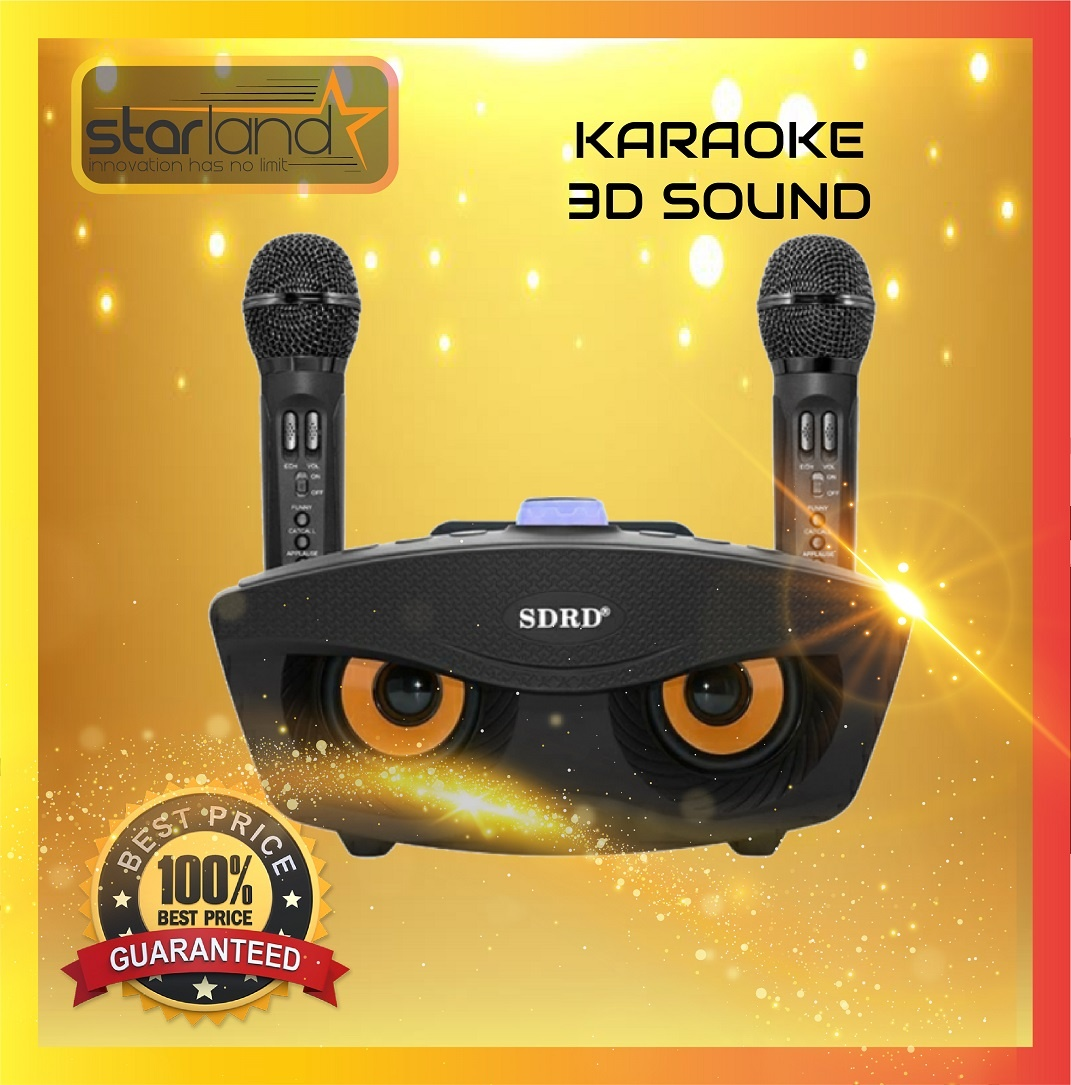 karaoké sans fil Super haut-parleur  SD 306