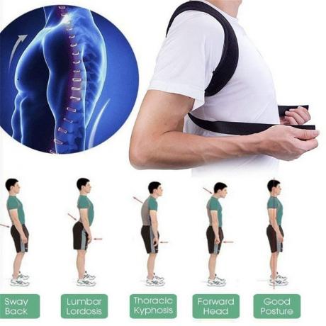adjustable back support